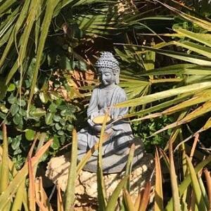 ein Schatz im Garten