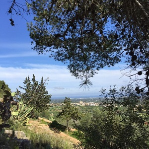 Blick vom Santuari de Consolacio